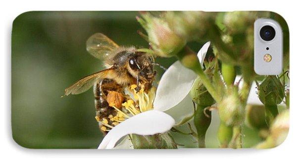 Mad Honeybee IPhone Case by Lucinda VanVleck