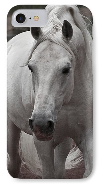 Maestoso II Ambrosia IPhone Case by Wes and Dotty Weber