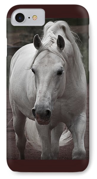 IPhone Case featuring the photograph Maestoso II Ambrosia D5881 by Wes and Dotty Weber