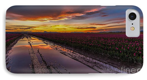 Magenta Fields Tulips IPhone Case by Mike Reid