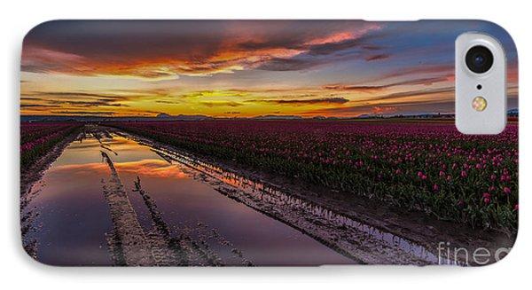 Magenta Fields Tulips IPhone Case by Mike Reid