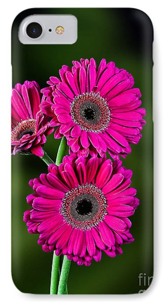 IPhone Case featuring the photograph Magenta Gerbera by Shirley Mangini