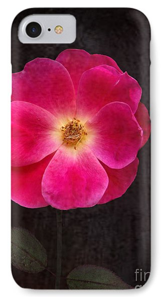 Magenta Mood IPhone Case by Kathi Mirto