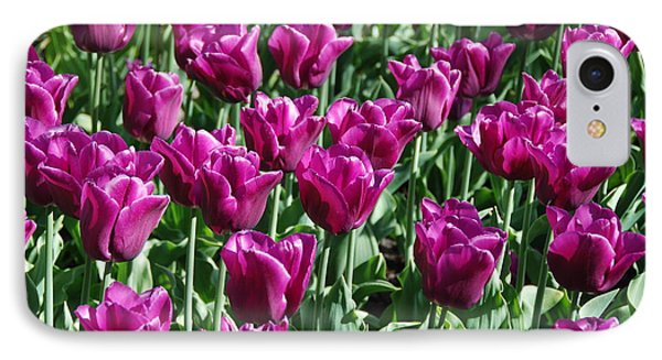 IPhone Case featuring the photograph Magenta Tulips by Allen Beatty