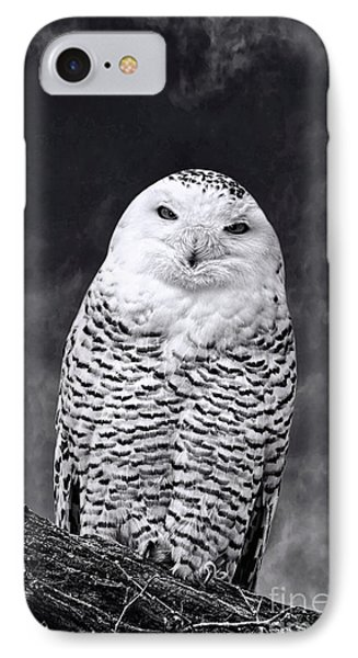 IPhone Case featuring the photograph Magic Beauty - Snowy Owl by Adam Olsen