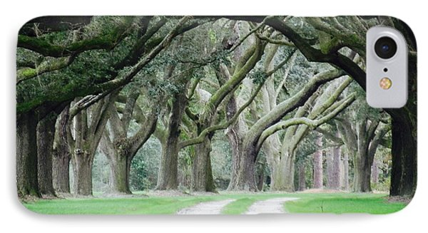 Magic Live Oaks IPhone Case by Patricia Greer