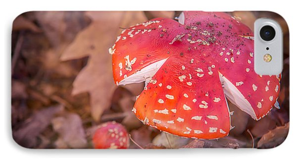 Magic Mushroom IPhone Case by Ray Warren