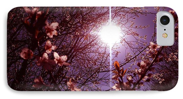 IPhone Case featuring the photograph Magical Blossoms by Vicki Spindler
