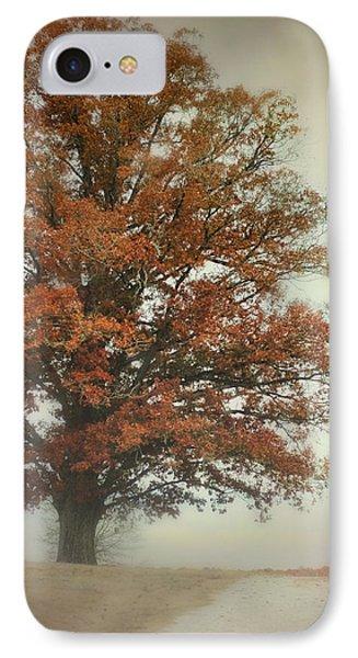 Magnificence - Foggy Autumn Scene IPhone Case