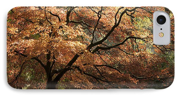 Magnificent Autumn Phone Case by Anne Gilbert