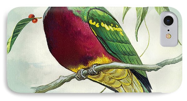 Magnificent Fruit Pigeon IPhone 7 Case by Bert Illoss
