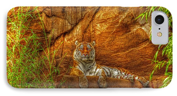 Magnificent Tiger Resting IPhone Case by Andy Lawless