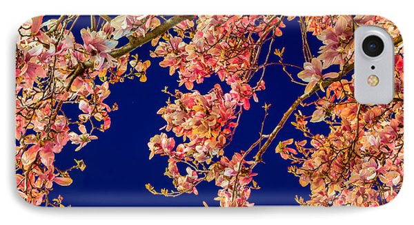 Magnolia - Redlight  IPhone Case by Susan Cole Kelly Impressions