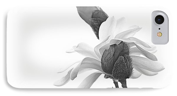 IPhone Case featuring the photograph Magnolia Bloom 1 by Tammy Schneider