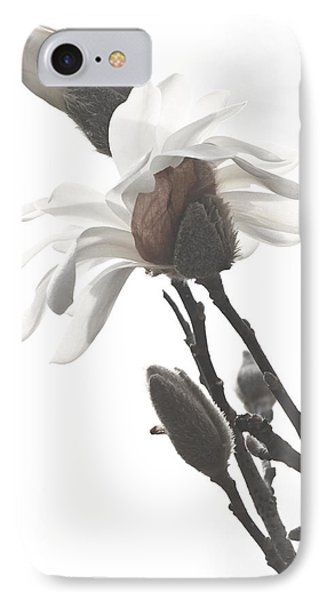 IPhone Case featuring the photograph Magnolia Bloom by Tammy Schneider