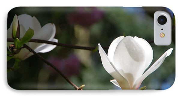 Magnolia Blossoms IPhone Case by Marilyn Wilson