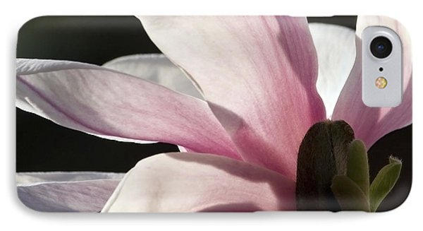 Magnolia II IPhone Case by Michael Friedman