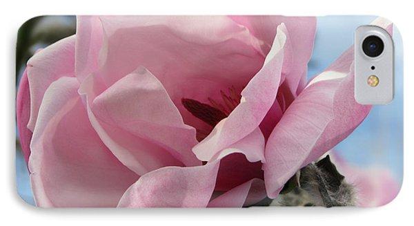 Magnolia In Spring IPhone Case
