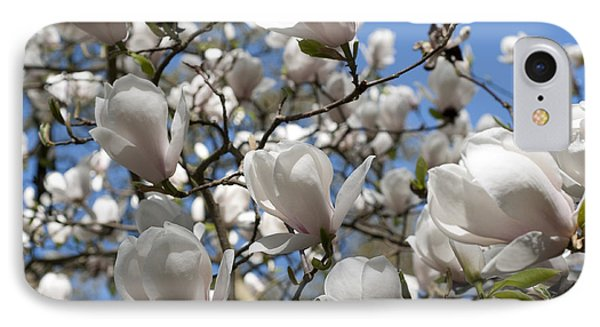 IPhone Case featuring the photograph Magnolia by Lana Enderle