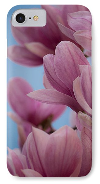 Magnolia On Blue Sky IPhone Case by Rob Amend