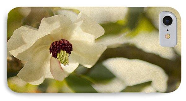 Magnolia IPhone Case by Rebecca Cozart