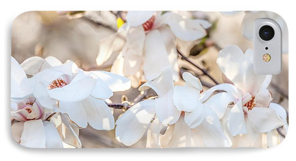 Magnolia Spring 2 IPhone Case by Susan Cole Kelly Impressions