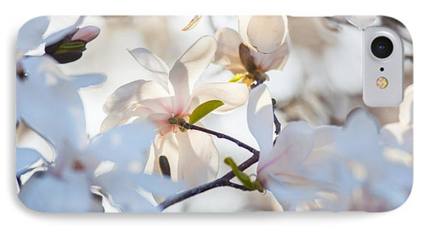 Magnolia Spring 3 IPhone Case by Susan Cole Kelly Impressions