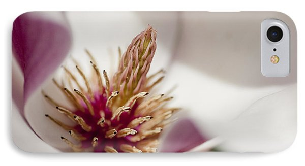 Magnolia IPhone Case by Steven Ralser