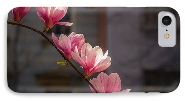 IPhone Case featuring the photograph Magnolia's Descent by Rob Amend