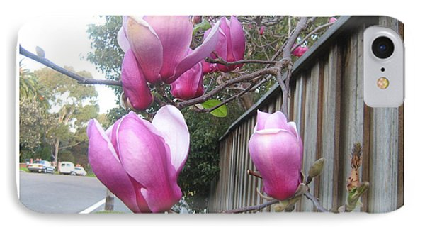 IPhone Case featuring the photograph Magnolias In Bloom by Leanne Seymour