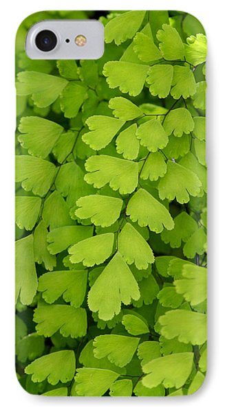 Maidenhair Fern IPhone Case by Art Block Collections