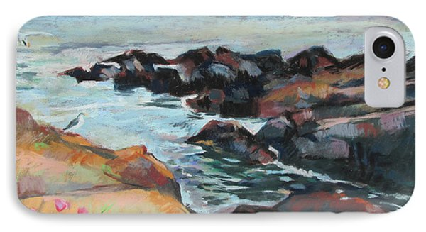 Maine Coast Rocks And Birds IPhone Case by Linda Novick