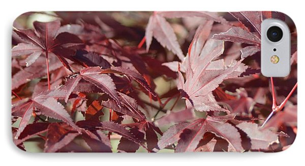 Maine Maple Leaves Phone Case by Lena Hatch