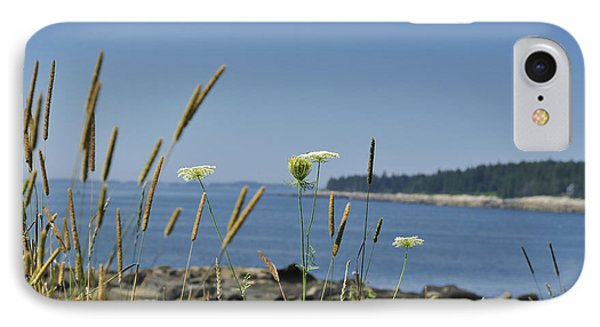 Maine Seascape Penobscot Bay IPhone Case by Marianne Campolongo