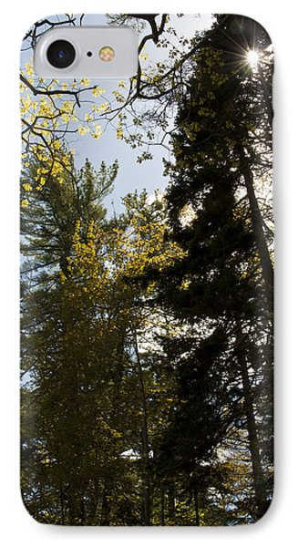Maine Spring Wood Phone Case by Daniel Hebard