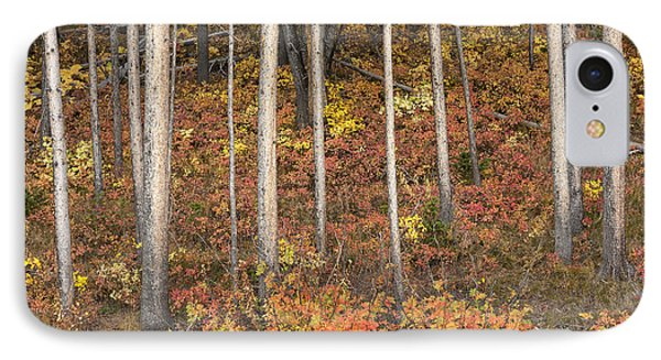 Majestic Autumn In The Grand Tetons Phone Case by Sandra Bronstein