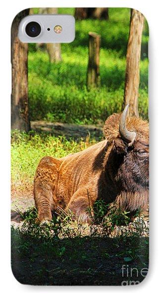 Majestic Bison Phone Case by Mariola Bitner