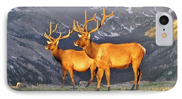 IPhone Case featuring the photograph Majestic Elk by Diane Alexander