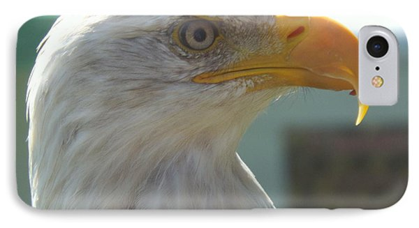 Majestic Icon IPhone Case by Lingfai Leung