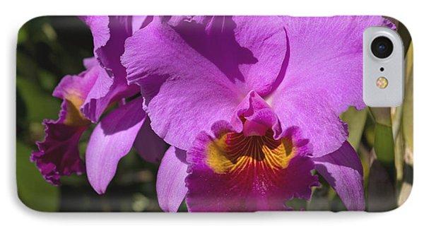 Far North Queensland iPhone 7 Case - Majestic Pink Cattleya Orchid Bloom by Kerryn Madsen-Pietsch
