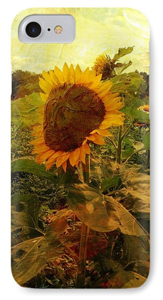 Majestic Sunflower  IPhone Case by Betty  Pauwels