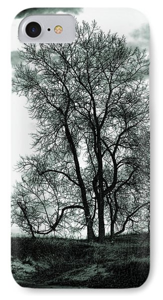 IPhone Case featuring the photograph Majesty by Lauren Radke