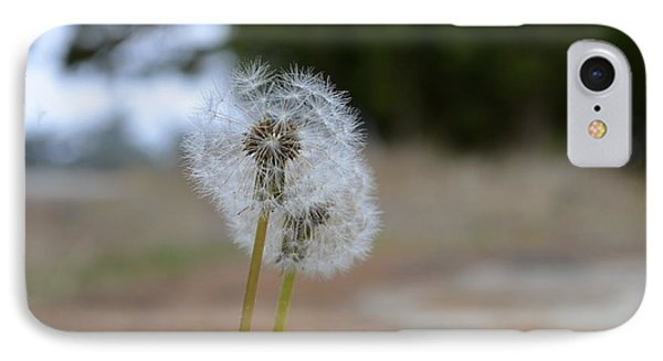 Make A Wish IPhone Case by Alex King