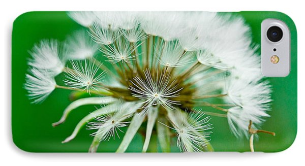 IPhone Case featuring the photograph Make A Wish by Annette Hugen