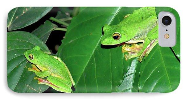 Malabar Gliding Frogs IPhone Case by K Jayaram