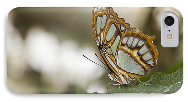 Malachite Butterfly Phone Case by Bryan Keil