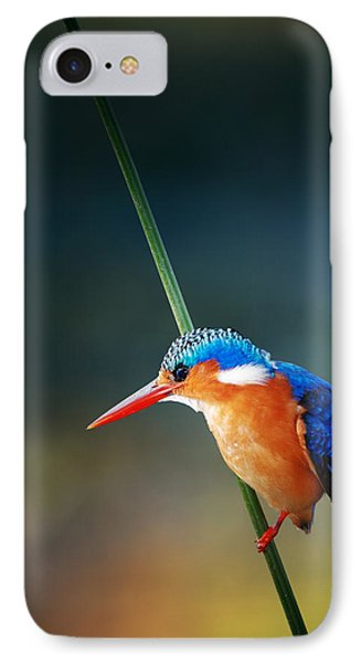 Malachite Kingfisher IPhone 7 Case