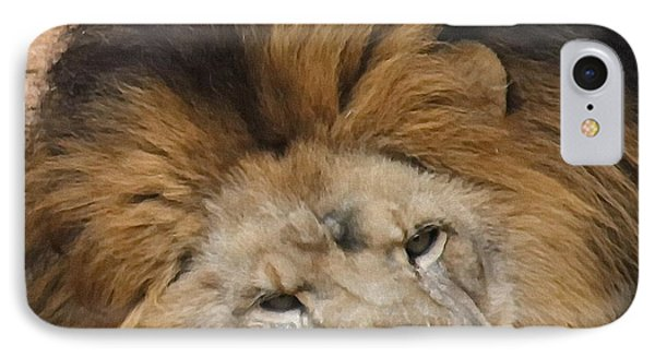 Male African Lion IPhone Case by Cathy Lindsey
