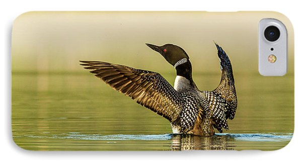 Loon iPhone 7 Case - Male Common Loon Drying His Wings by Chuck Haney