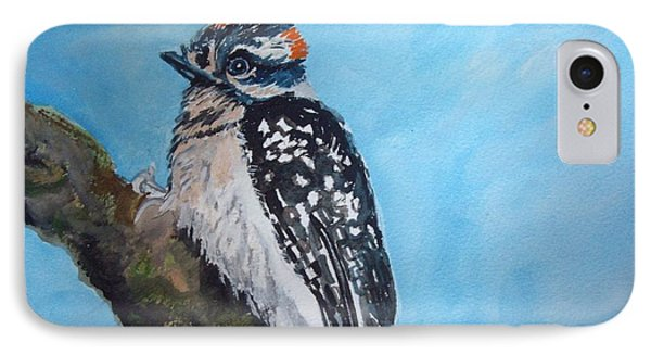 Male Downy Woodpecker IPhone Case by Carole Robins